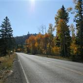 Highway 14  - Autumn